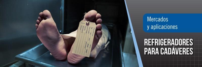 banners-interiores-cadaveres