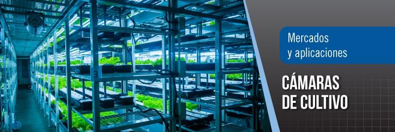 banners-interiores-cultivo