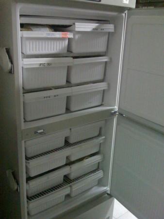Congelador Biomédico MDFU-5312-PA, de -20°C, -30°C, -35°C, 481 Litros/ 17 Pies Cúbicos, 120 Volts 60 Hz